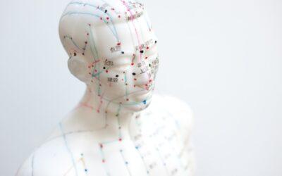 Prøv noget nyt – tag på et akupunktur kursus!