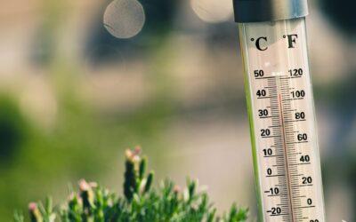 Stort udvalg at termometer